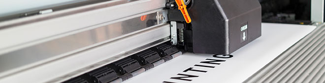 Vinyl Lettering Printer in San Diego County
